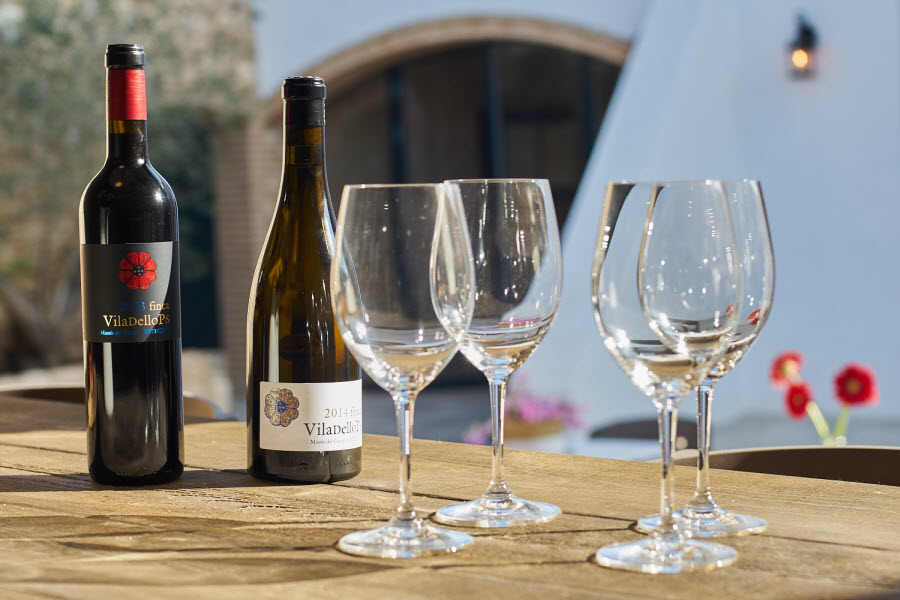 Wine events at Masia Viladellops